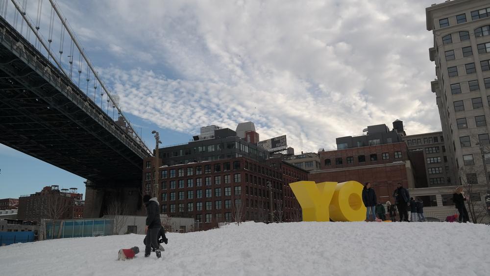 Oy/Yo Brooklyn Bridge Park