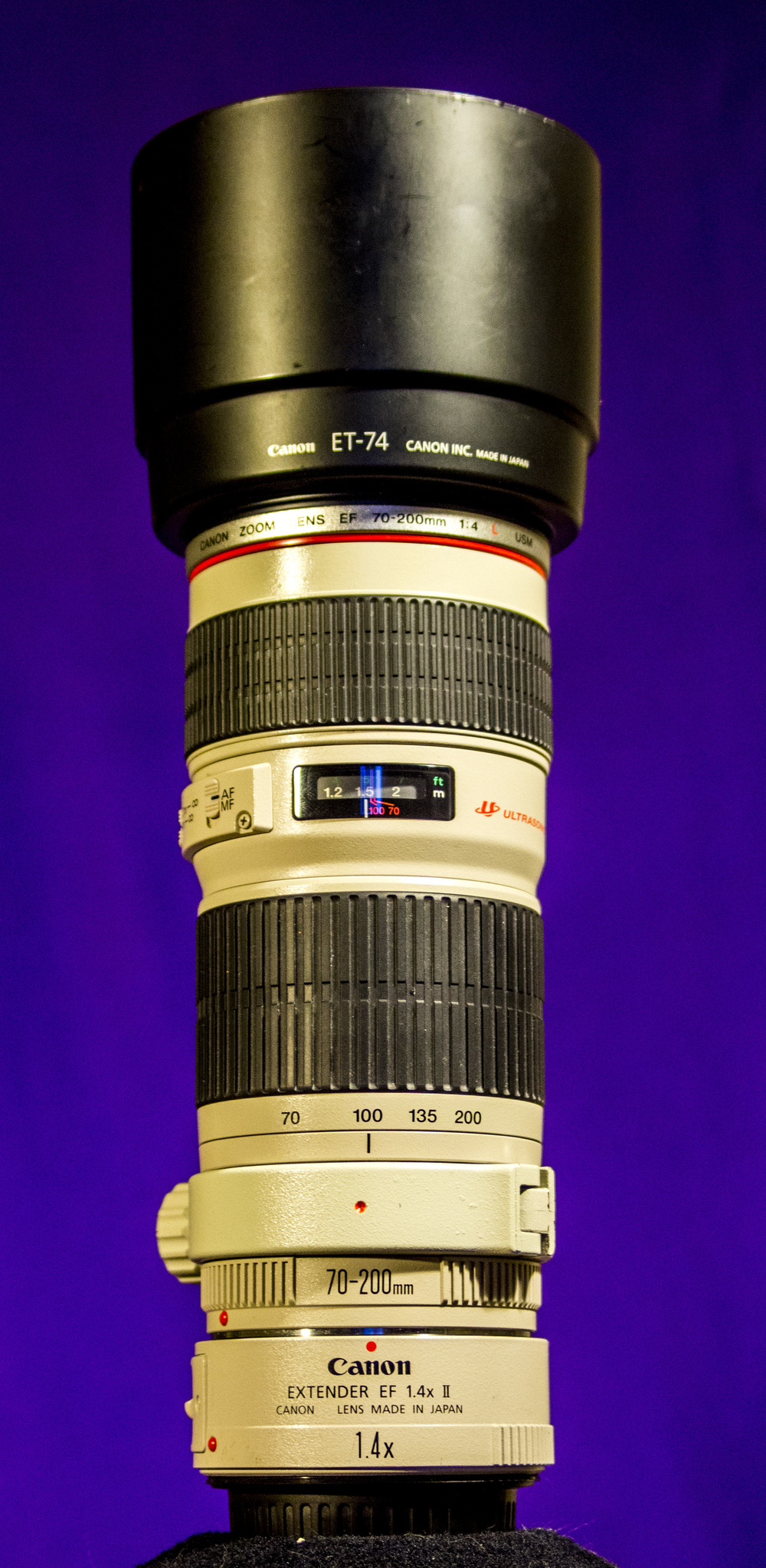 Canon EF 70-200 f4L USM (with 1.4 Extender II)  Lightweight, and beautiful glass. The extender helps get really close-up images.