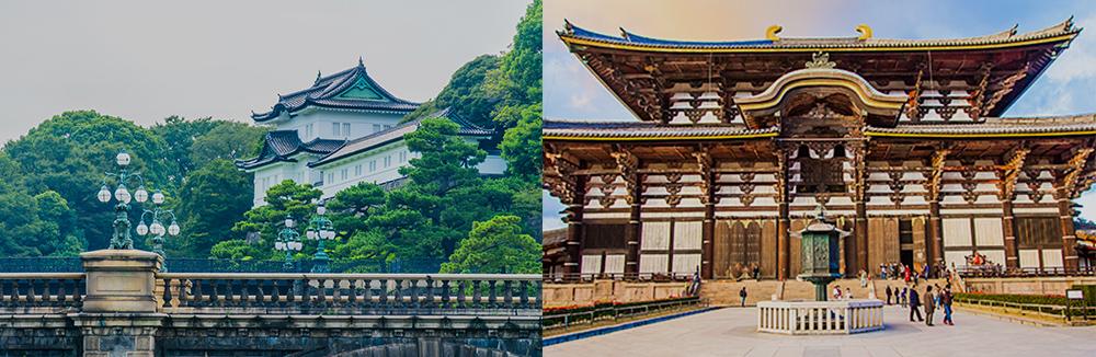 Study in Japan -