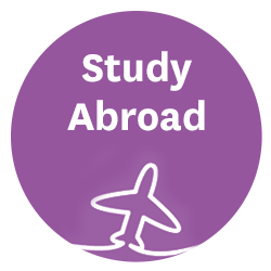study-roundbutton-lg.png