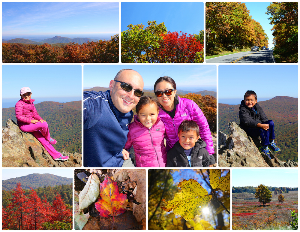 Shenandoah National Park, October 2015