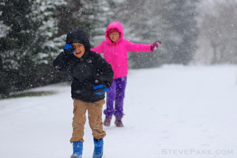 Snowzilla2016-003_GE3A4520.jpg