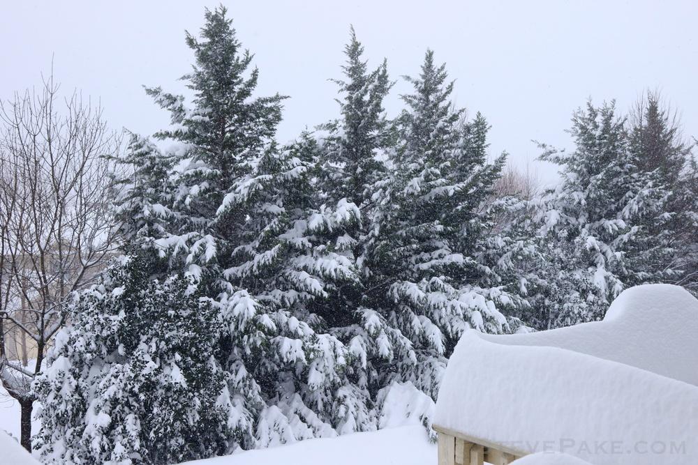 Snowzilla2016-010_GE3A4771.jpg