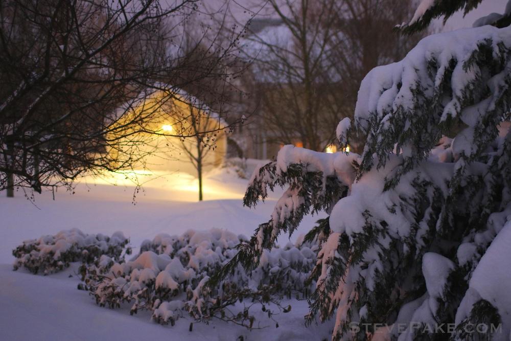 Snowzilla2016-029_GE3A4977.jpg