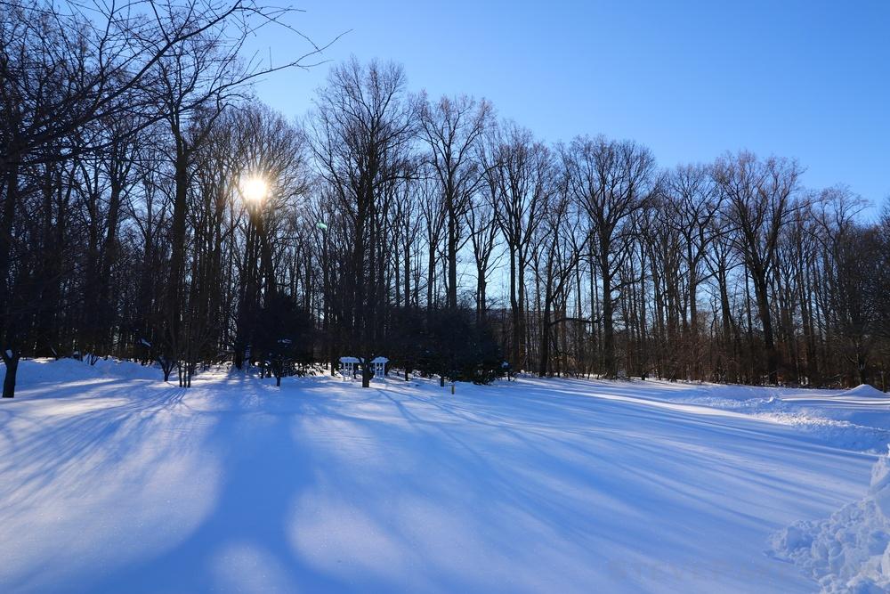Snowzilla2016-040_GE3A5078.jpg
