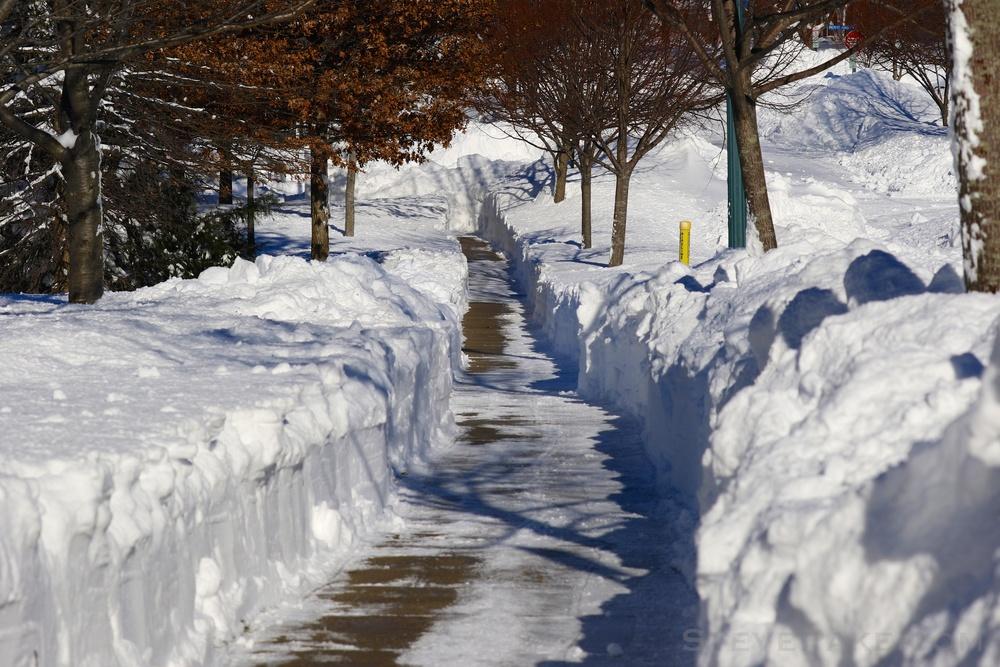 Snowzilla2016-052_GE3A5122.jpg