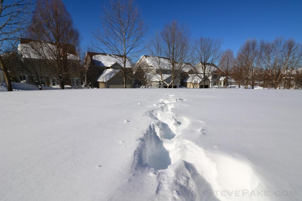 Snowzilla2016-060_GE3A5196.jpg