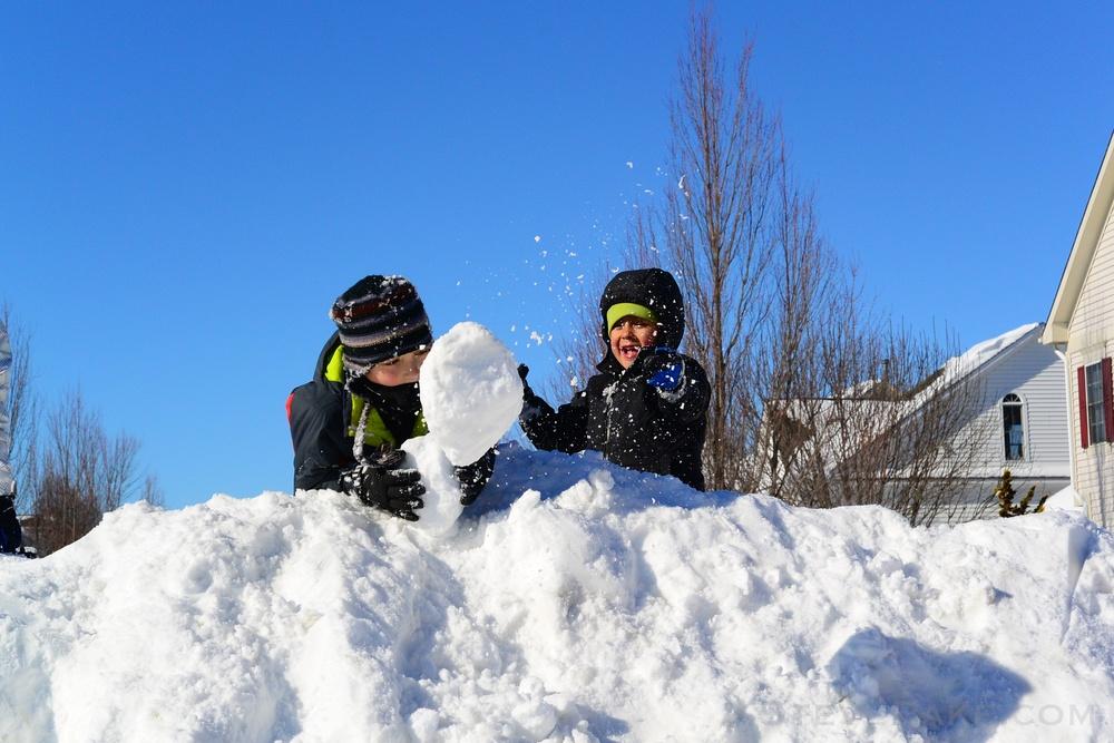 Snowzilla2016-080_DSC_0441.jpg