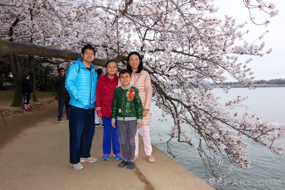 GE3A5727ap-2k_DC-Cherry-Blossoms-WM.jpg