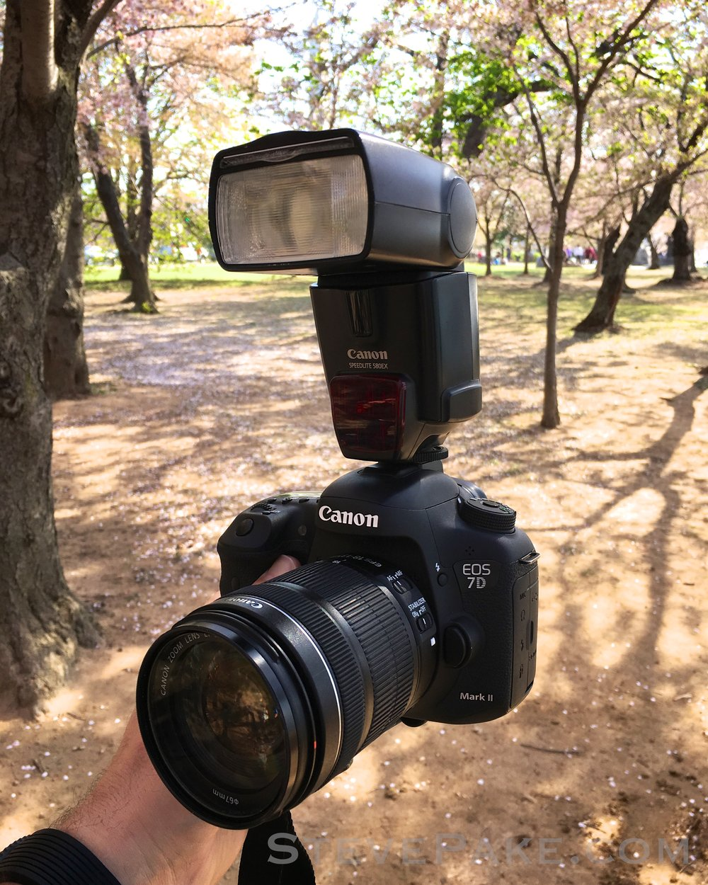 "Cherry Blossoms setup: Canon 7D Mark II with 18-135 white box special ""kit"" lens, and an old 580EX flash bought used from a buddy a long time ago."