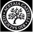 castelli logo.jpg