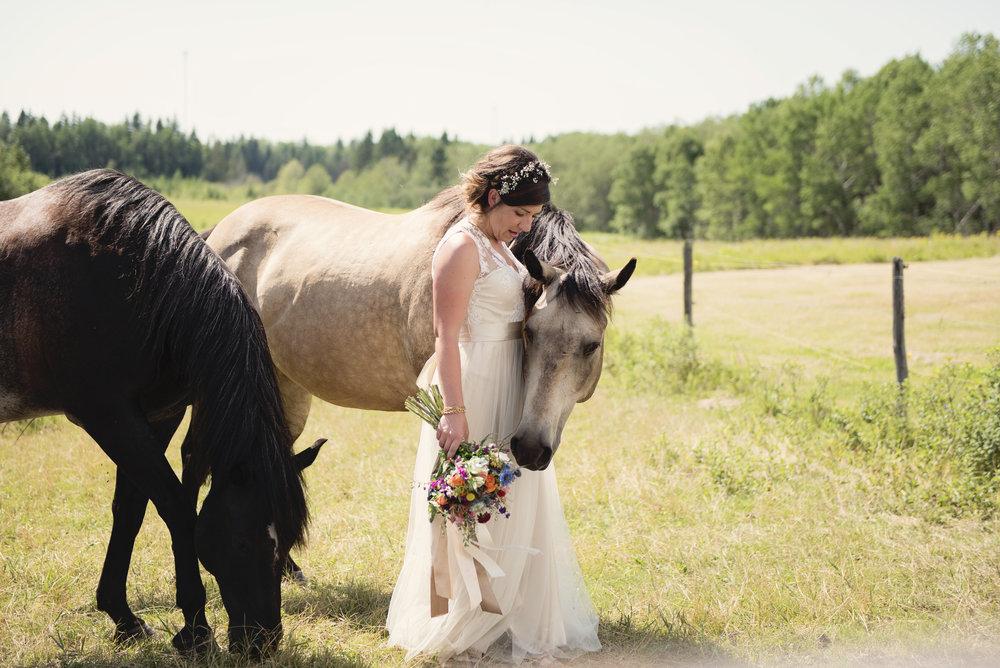Cynthia Korman Photography & Design