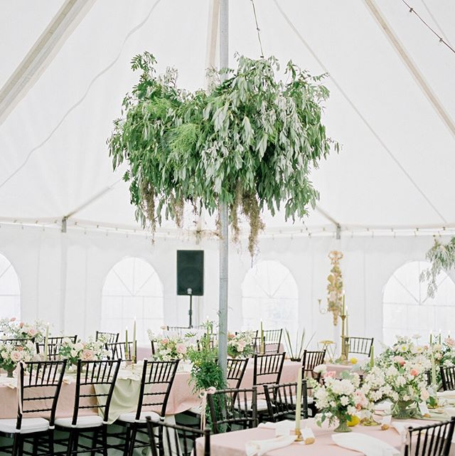 All I can say about this wedding is WOW and LINK IN BIO for more incredible photography, bridal style, florals, details, desserts and the list goes on and on!  Photography @estherfunkphotography  Wedding Coordinator @sharonwebbevents  Florals @academyflorist  Decor and stationery by the bride @jenhalbesmadesign  Rentals @ctrentals ; Party on Rentals; @jbmusicco  Hair @shearblisshairsalon  Catering - Exceptional Thymes Catering  Desserts @thefarmersdaughtermb  Tent - Rain or Shine Shelters ....#weddinginspiration#blogger#weddingblog#weddinginspo#weddingdetails#weddingstyle#weddingphoto#weddingideas#engaged#weddingplanning #wedding #isaidyes#thatsdarling#flashesofdelight#shineon#visualcrush#soloverly#thatsdarling#hostwinnipeg#winnipegweddings#winnipegbride