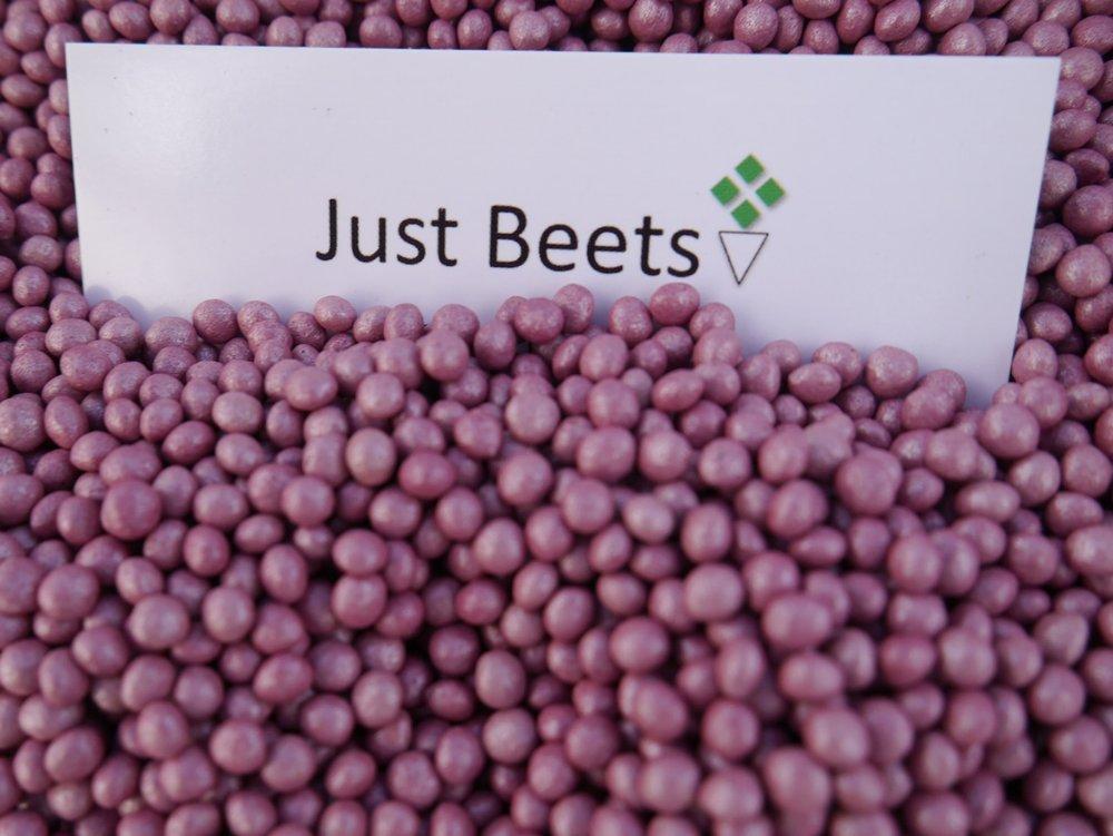 Just Beets Hybrid Beet Seed.jpg