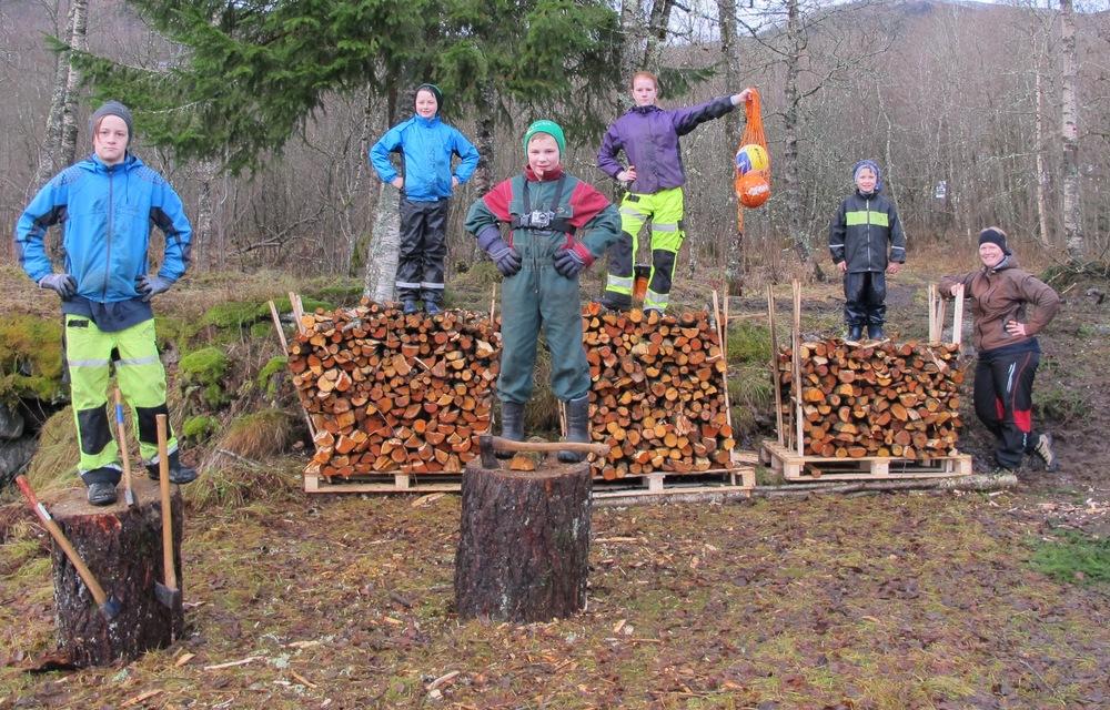 Eikås 4H og Kransen 4H har laga ein flott naturmøteplass på Svidalsneset i Jølster. Foto Merete Støfring.JPG