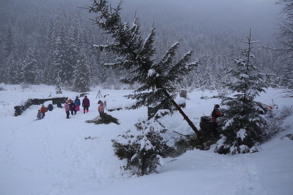 troda snø.jpg