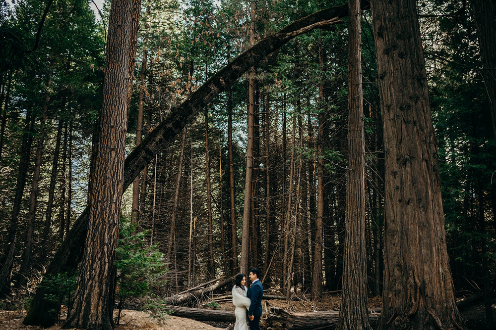 AUbrey + Michael | Yosemite, California -