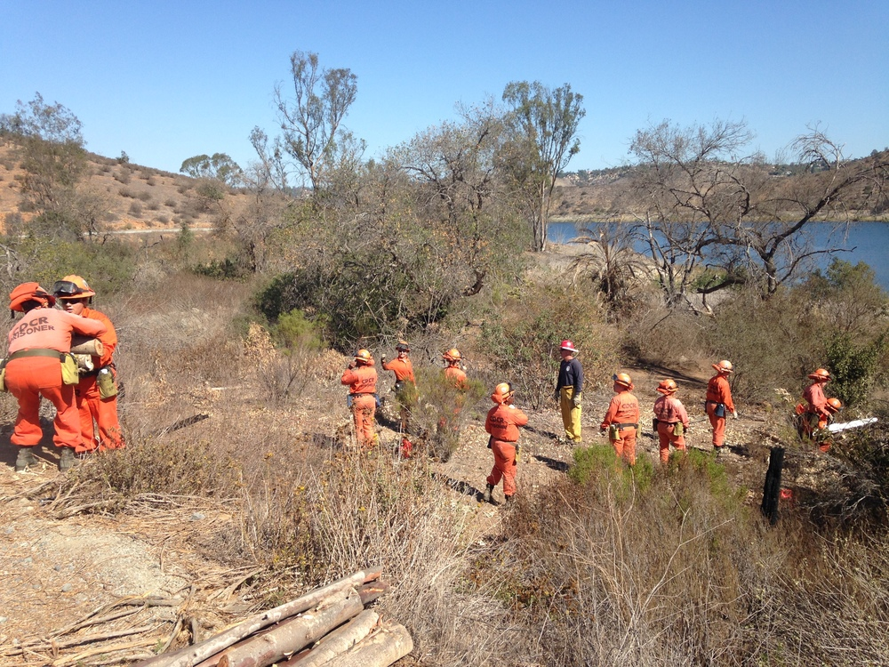 Cal Fire crews working at removing downed trees. Any wood on the roadside is free for the taking. There are also trail closures happening that will temporarily impede the use of trails. We are using heavy equipment to remove dense patches of eucalyptus saplings and arundo. Please heed the signs and stay far away from the equipment – it can throw debris and hurt you if you are too close.