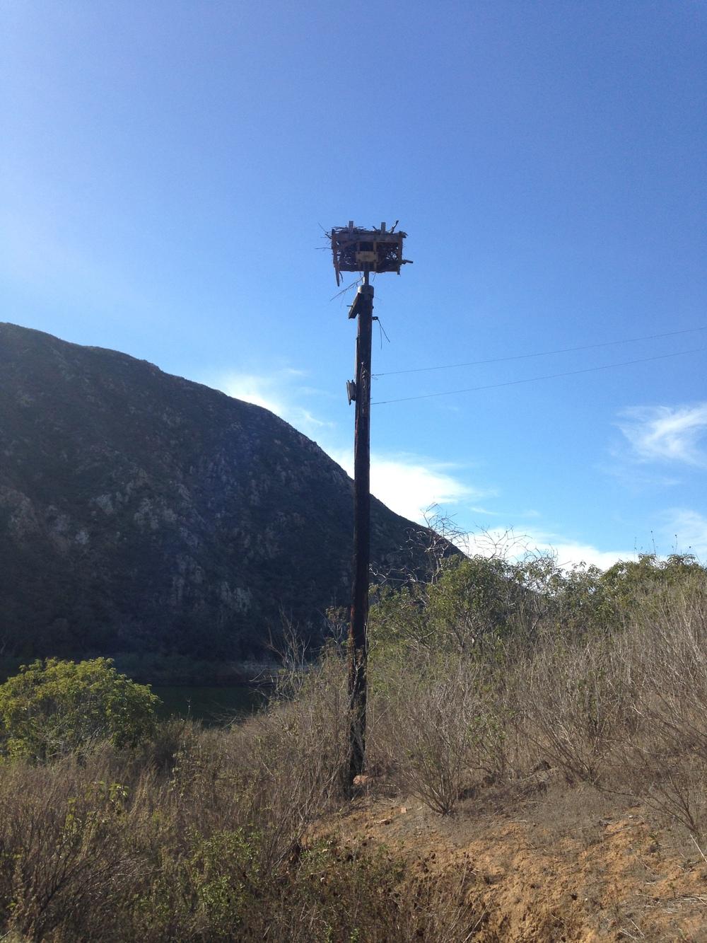 Dam Keeper Nest Platform