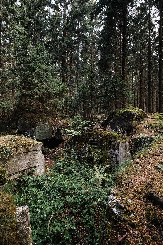 Hurtgen Wald-4.jpg