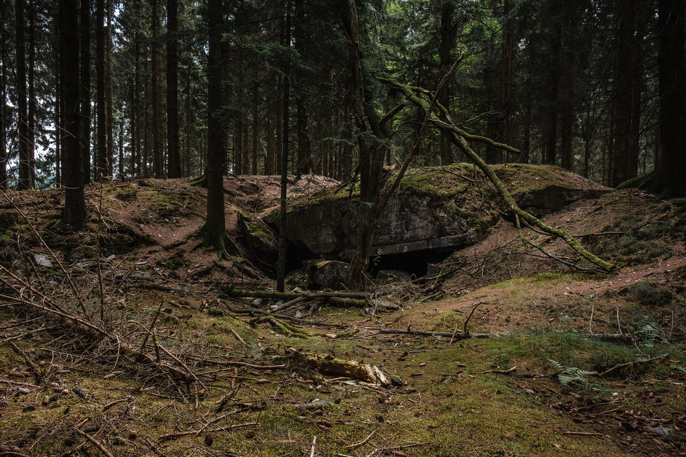 Hurtgen Wald-17.jpg