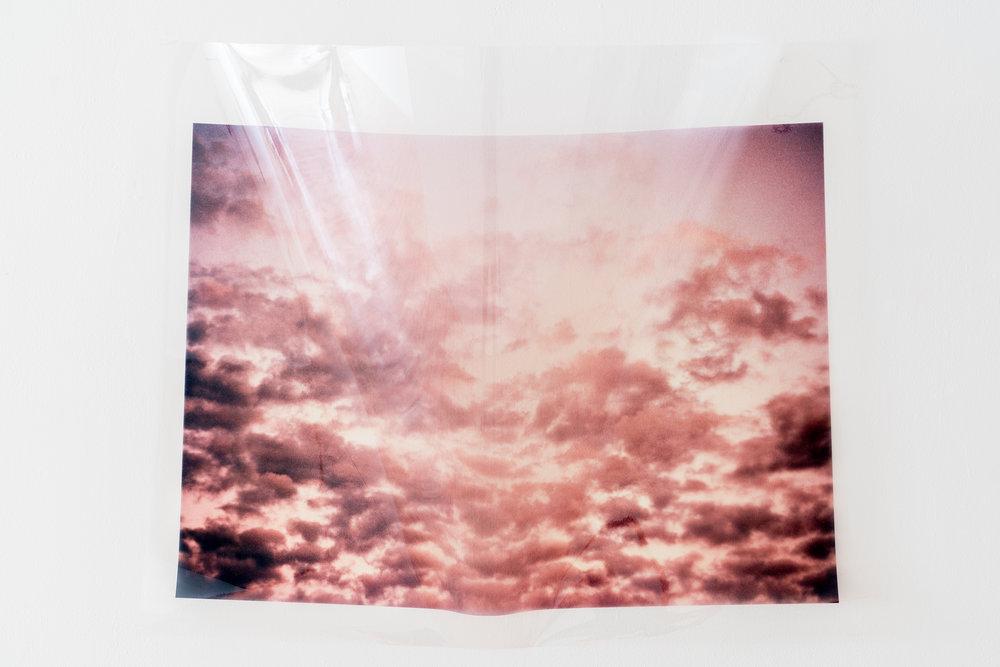Epyllia . Xan Shian. 30 x 44 in. Colour Inkjet print on transparency. 2017.