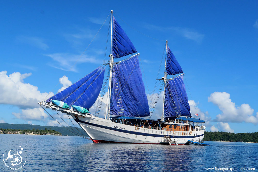 The Indo Siren, our floating home for our ten night cruise through Raja Ampat.