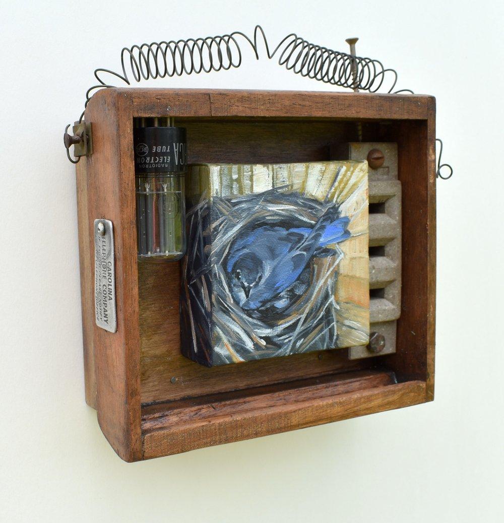 Carolina Bluebird Assemblage - Robn Popp.jpg