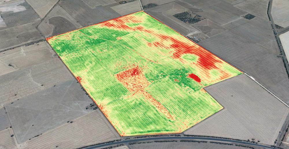 VizionAir- Drone Precision Agriculture