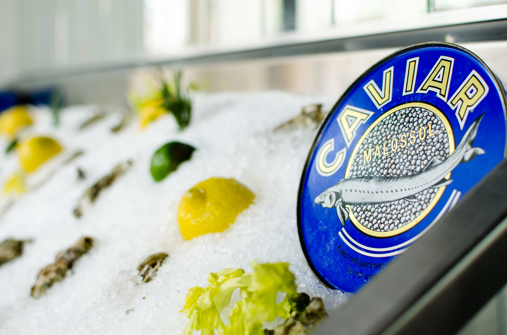 Caviar & Oysters