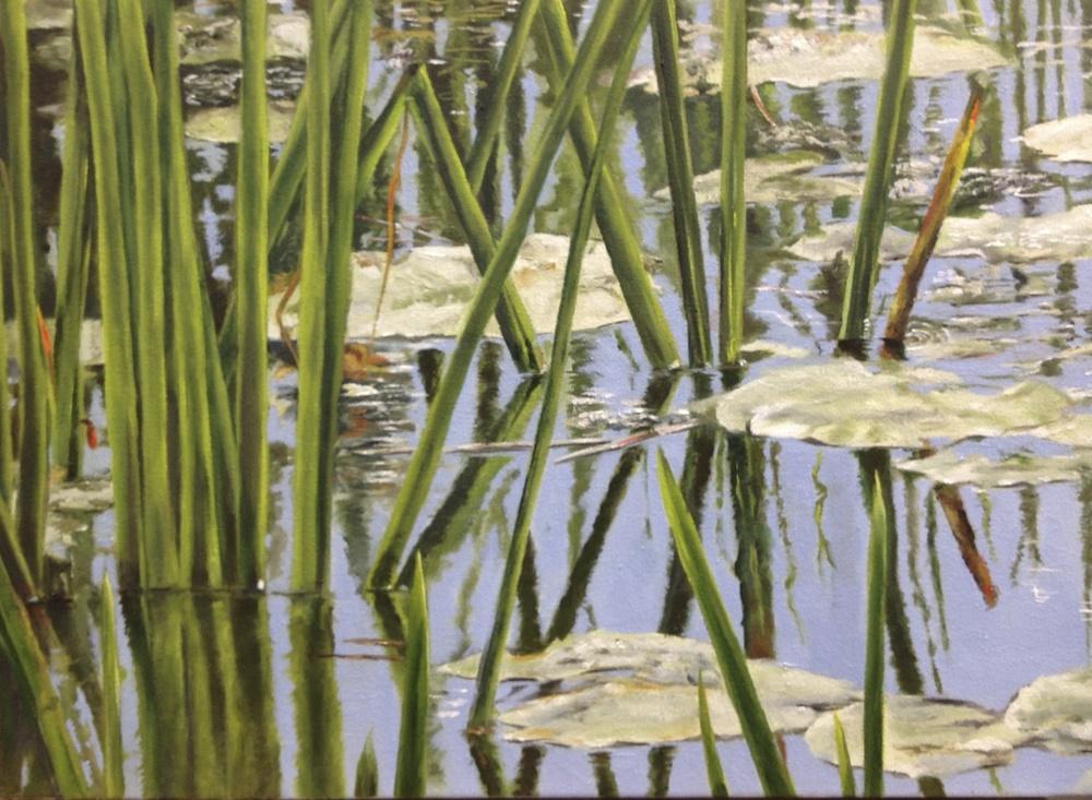 Rice Lake Lilly Pads