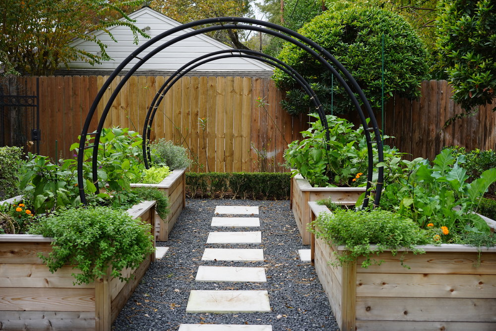 Marnie Garden.JPG