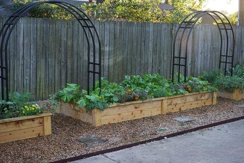 4\' x 8\' Cedar Garden Kit — Rooted Garden