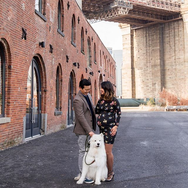 A lot of cute things were happening under the Brooklyn Bridge this morning. Another lovely couple braving the low temps. ❄️❄️❄️❄️#showmethedogsiwanthedogs