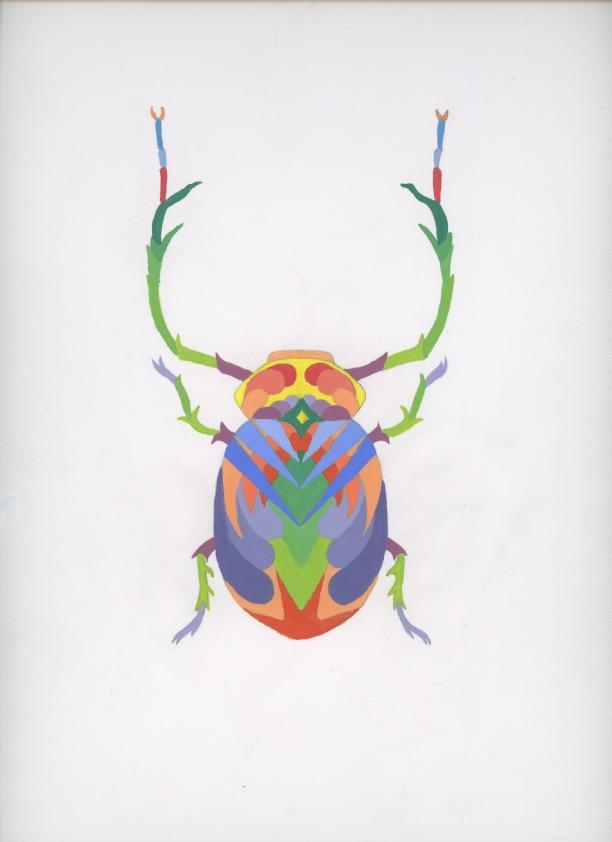 bug 5.jpeg