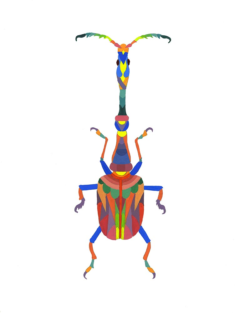 Bug pattern 5.jpg