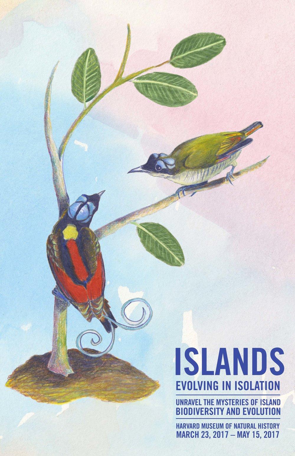 Island_V3_1.jpeg