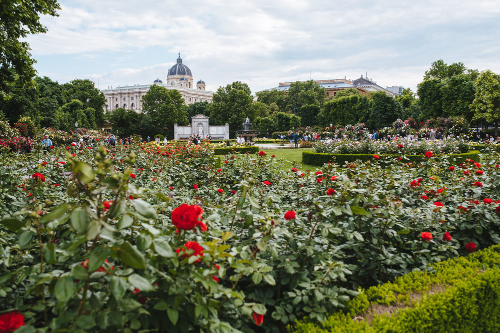 Vienna-Engagement-Photographer-3.jpg