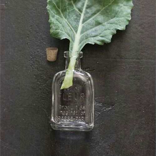 green perfume workshop