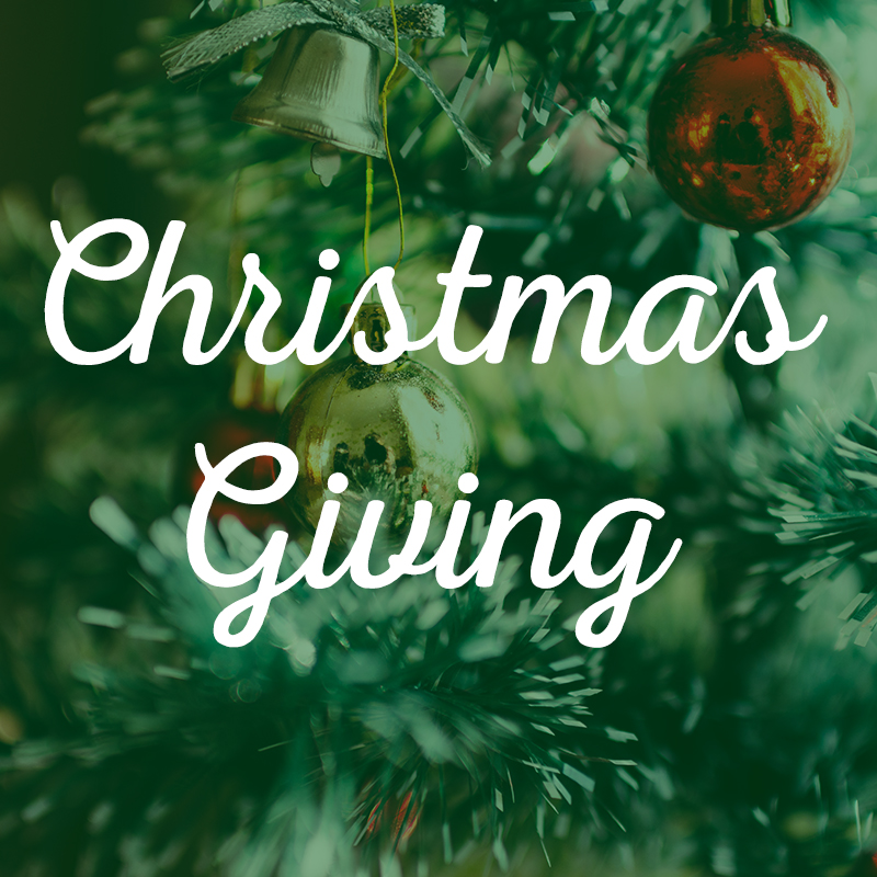 Display a tree in your church with ornaments requesting gifts for individual foster children. Attendees choose an ornament, purchase a gift described on the ornament, and return the gift unwrapped for the child.