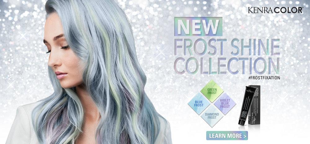 Frost_website_homepage.jpg