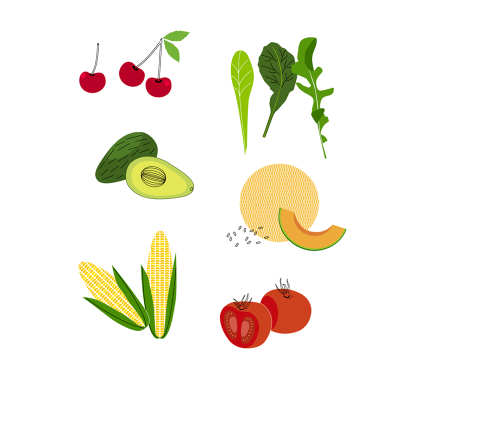 EVERYDAY FOOD  MAGAZINE FRUIT & VEG ILLUSTRATIONS SPECIAL ISSUE