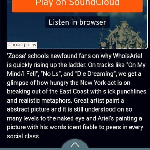 Good reads, courtesy of @ughhblog 🙏 #ZOOSE ☁  #WhoIsAriel