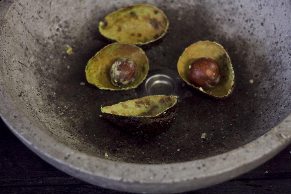 avocado1_4.jpg