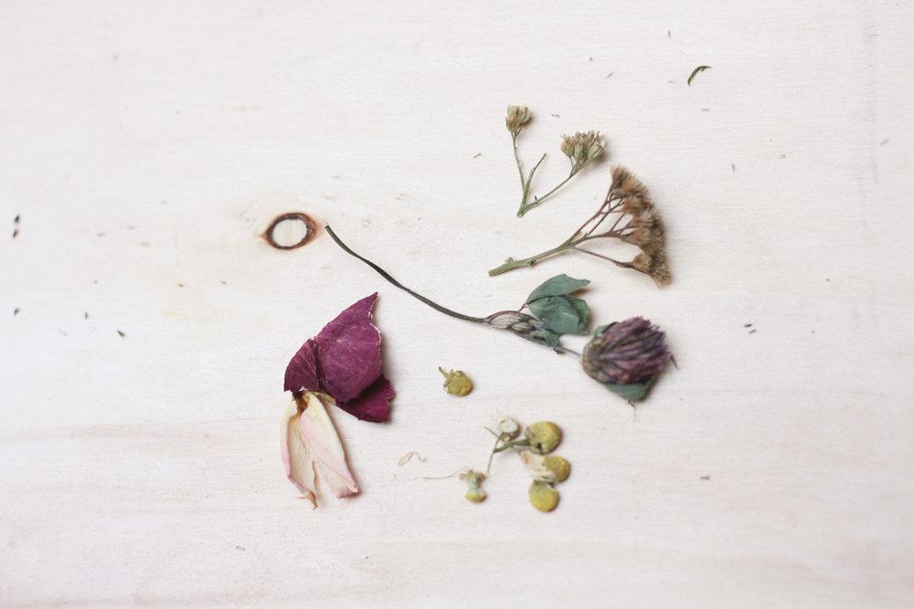 Blütentee herstellen