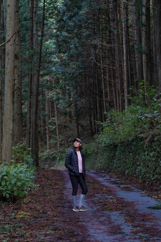 hiking woods japan