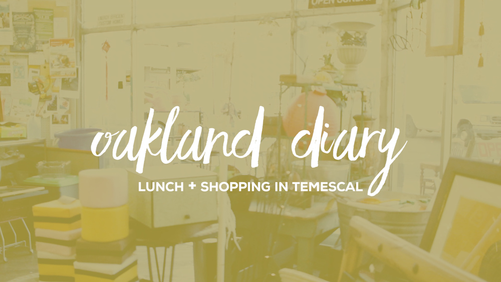 temescal oakland diary lunch shopping thrifting