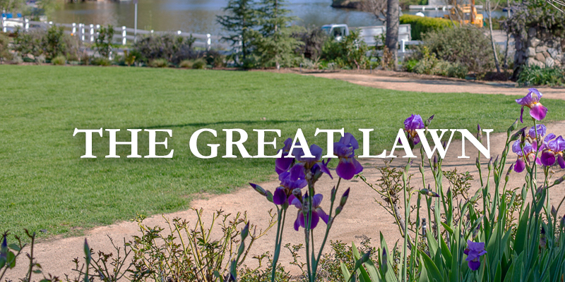Lawn-Gallery-Label.jpg