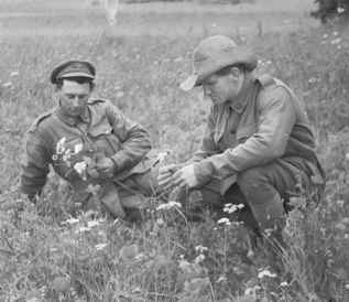 Two Australian soldiers in a reflective moment in France. Photo courtesy Australian War Memorial