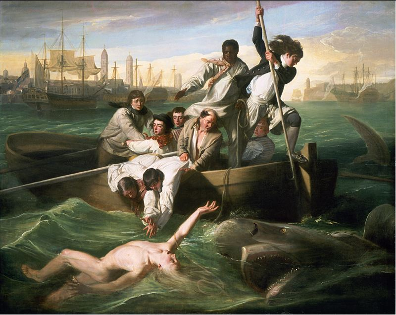 Watson and the Shark (1776) | John Singleton/National Gallery of Art